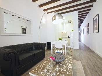 Loft in Plaza Españana Montjuic with private ter